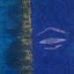buddha blue eight.